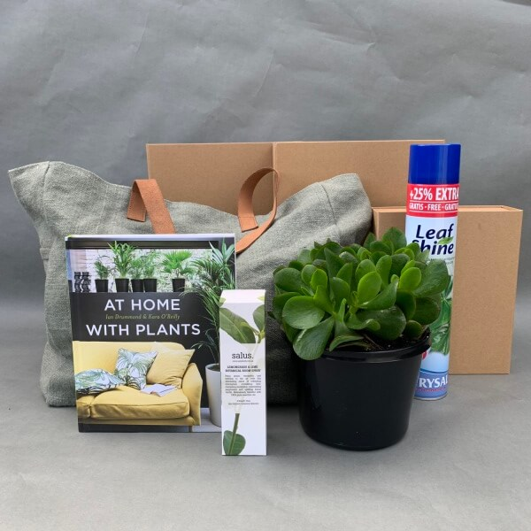 Plant Lover Box